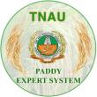 Paddy Expert System