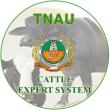 Cattle Expert System